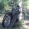 Wycieczka rowerowa szlakiem Kanału Elbląskiego