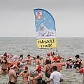 Elbląskie morsy walczyły o pobicie rekordu Guinnessa